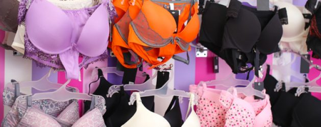 Fantasy lingerie st petersburg florida